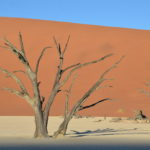 Circuit 4x4 safari lodges parc namib deadvlei