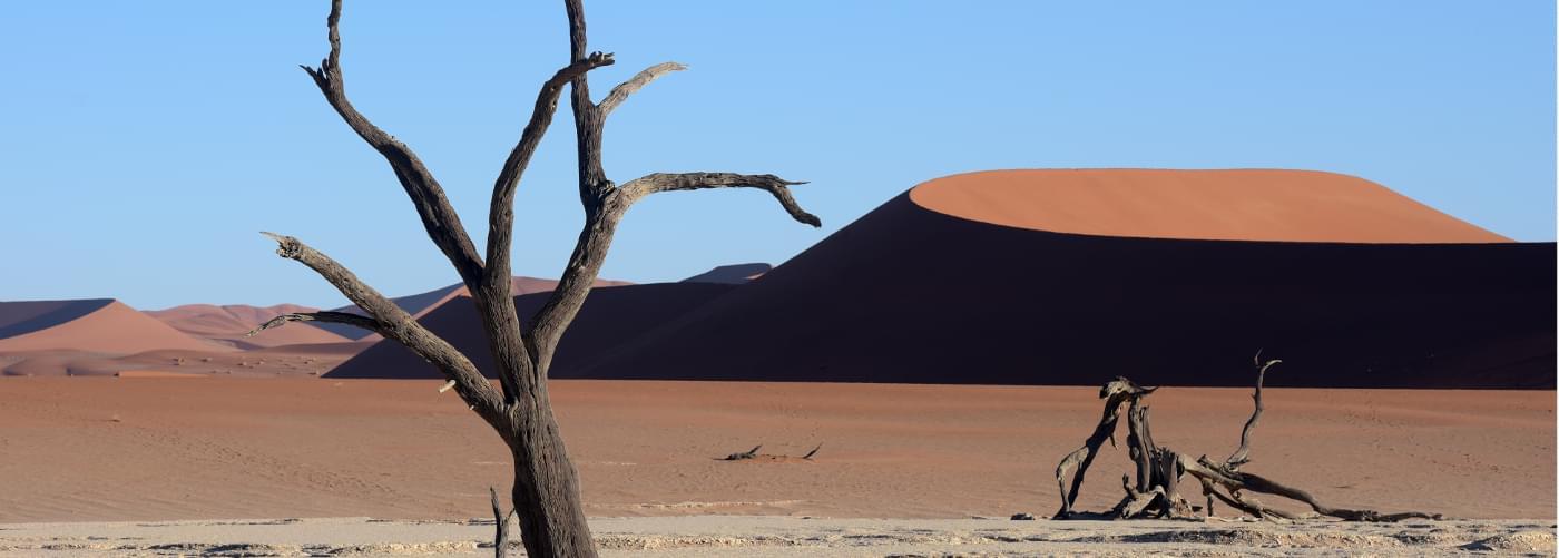Dunes et vlei du désert du Namib, secteur du Deadvlei et Sossusvlei