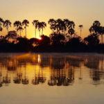 Croisière en bateau sur le Zambèze au coucher du soleil